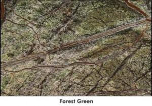 largeforestgreen
