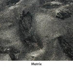 largematrix