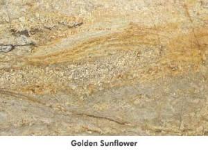 largegoldensunflower