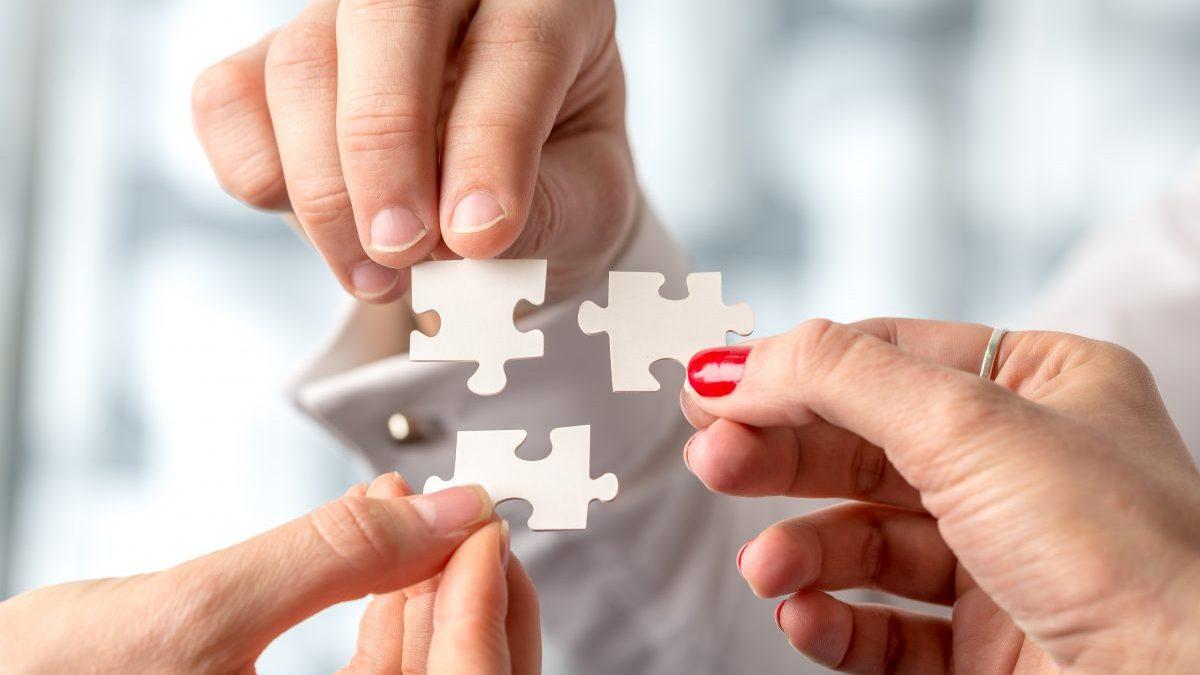 ERP Implementation puzzle