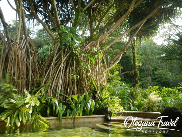 vacation destinations based on months of the year - Natural Hot Springs at Tabacon Resort in Costa Rica