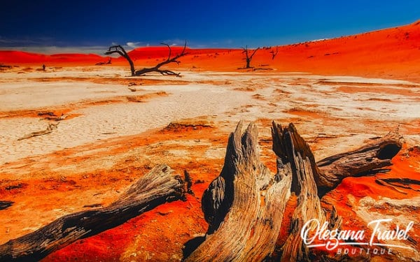 vacation destinations based on months of the year - Namibia