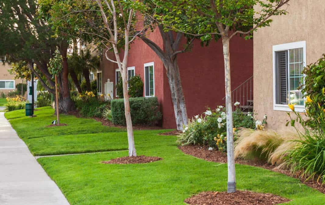 Lush landscape and peaceful walkways