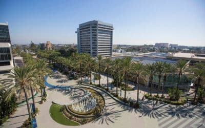 Here Are What the Locals in Anaheim Are Doing This Summer