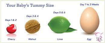 Breast milk Breastfeeding Baby Tummy Size Number of Feedings Ounces Bottle Calculator