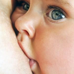 Nursing Your Toddler - Extended Full-Term Breastfeeding