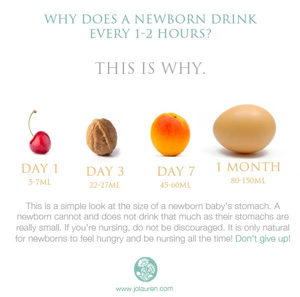 Newborn Baby Breast Milk Stomach Capacity