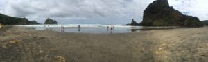 Piha Beach Panorama