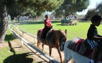 Summer Activities to Do Near Montebello