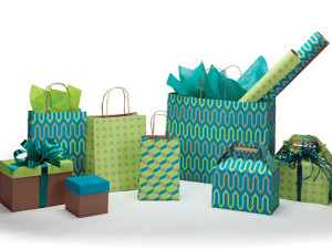 Geo Trio Collection Paper Shopping Bags and Boxes