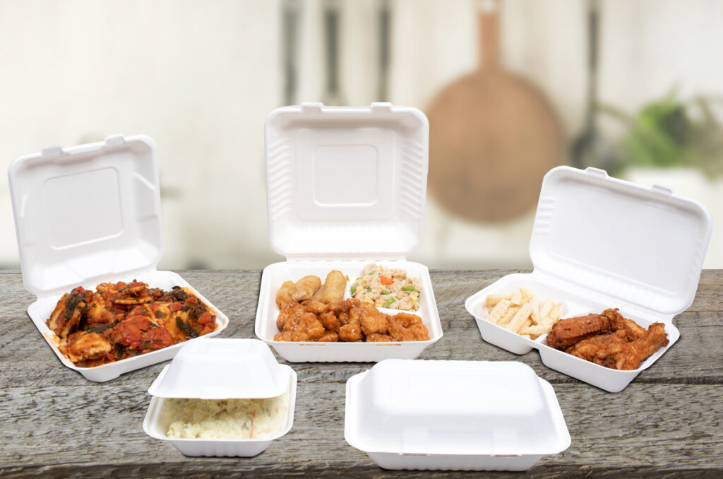 Bagasse compostable food takeout boxes
