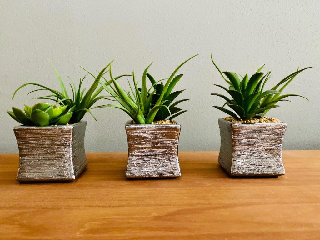 Set of 3 Artificial Succulents