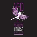 logo_vfd