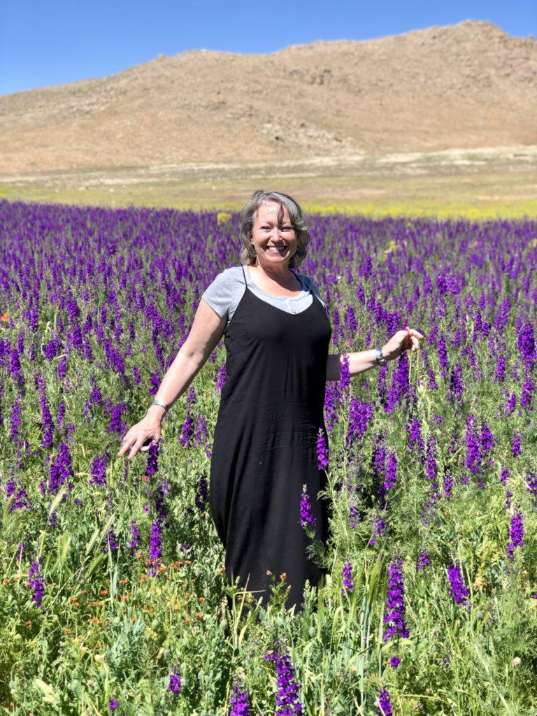 Fields of Wildflowers in Morocco