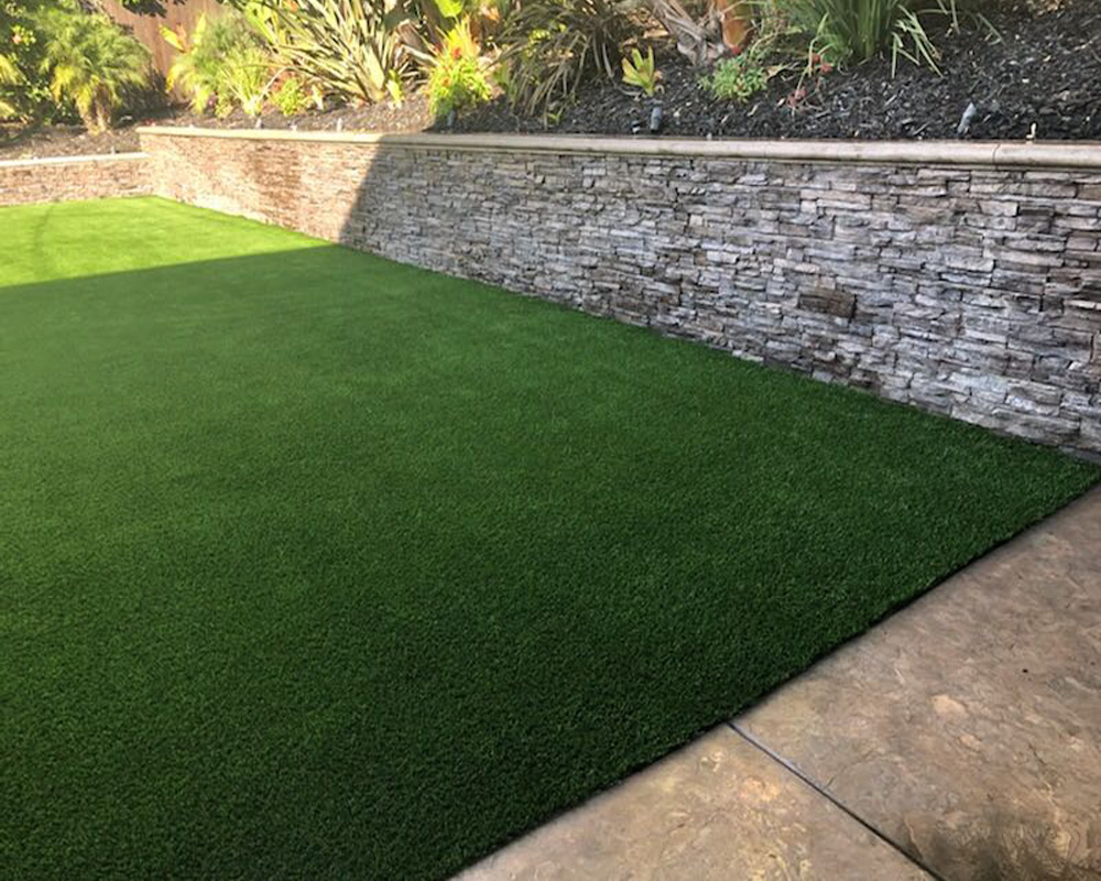 Yard with turf