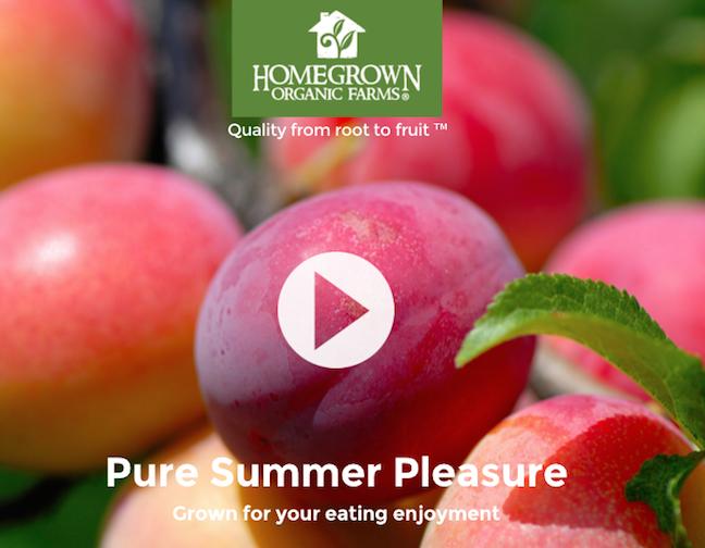 Homegrown Organic Farms