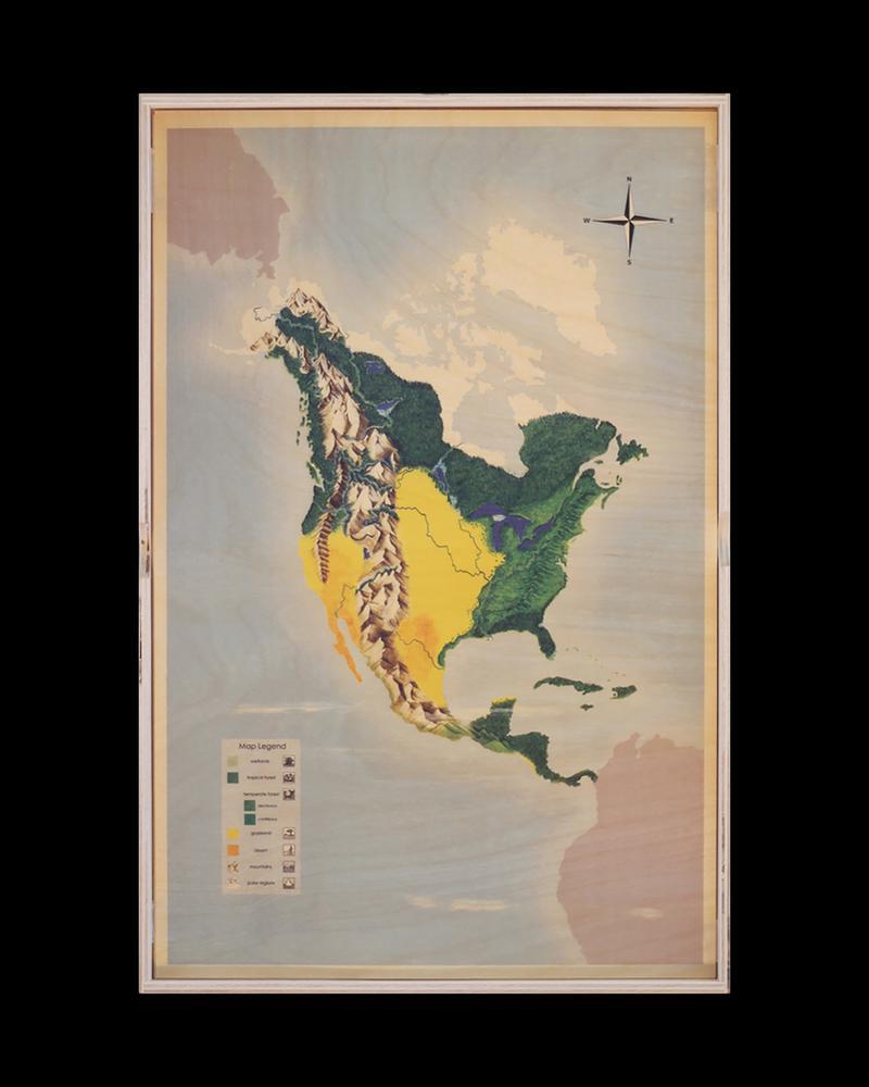 North America Biome Stencil