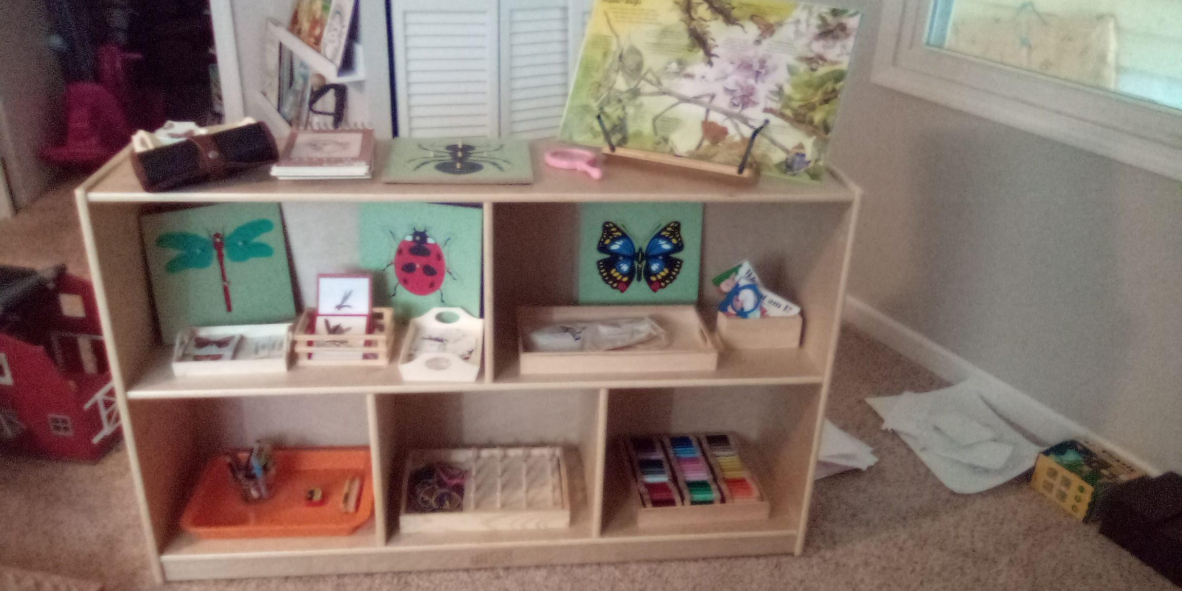 Montessori Bug Unit