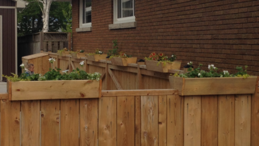 Planter boxes - made to sit on top of your fence