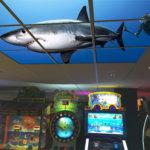 Arcade Orlando Sample LED Backlit Ceiling Shark