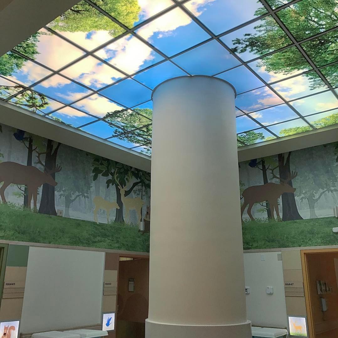 Artificial Sky Lobby Skylight