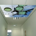 National Guard Sky Ceiling