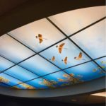 New York CT Scan 14ft Oval skylight