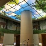 backlit photographic ceiling panels