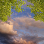 sunset on open sky with biophilic lighting