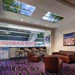 sport stadium suite lighting LED skylight ceiling