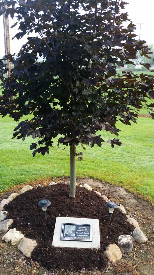 Tyler's-Class-Memorial-Tree-at-Juda-Park