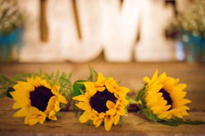 Sunflowers and Love Sign Decor Rental