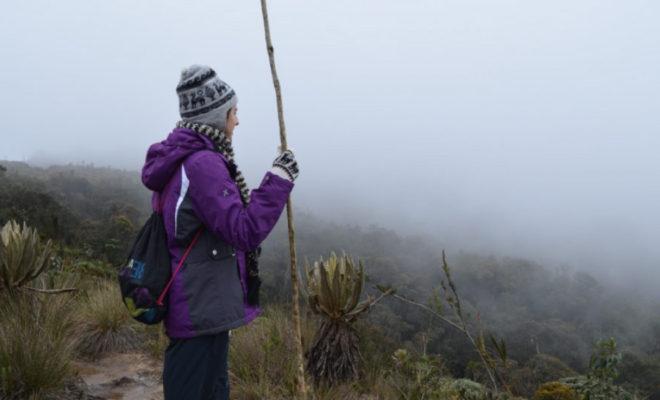 red ambiental, colombia, grupo ambiental, conversatorios, eventos medellín, programación cultural medellín