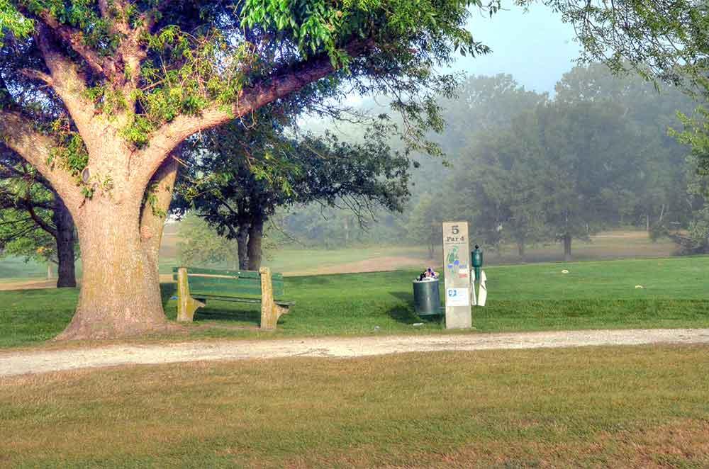 Albany-Golf-Course,-Albany,-MO-Tree