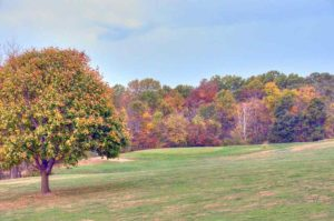 American Legion Golf Course. Best Golf Courses in Hannibal, Missouri.