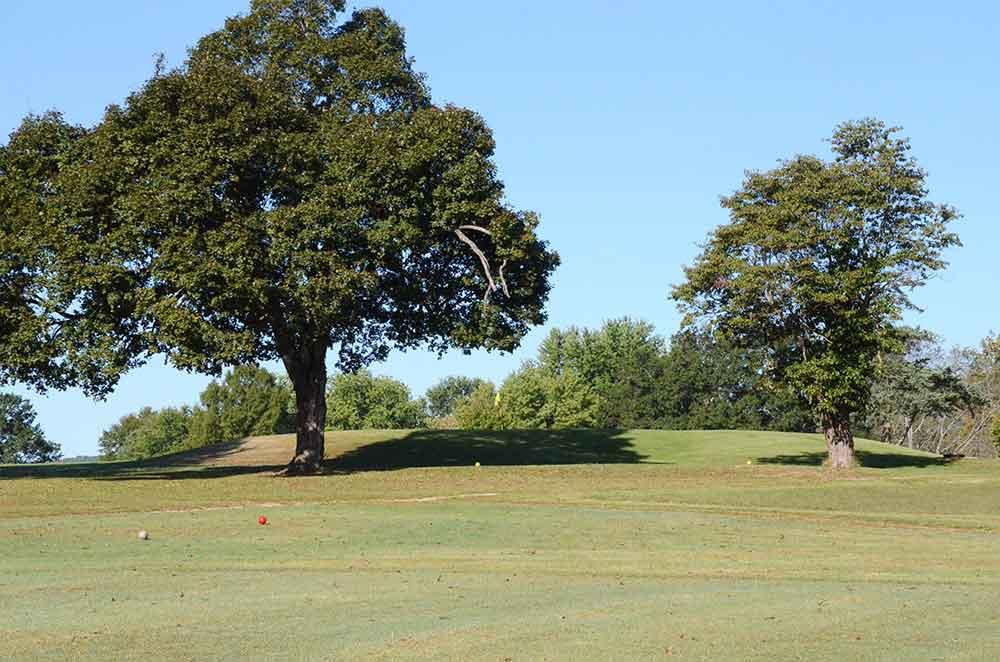 Arcadia-Valley-Country-Club,-Ironton,-MO-Tree