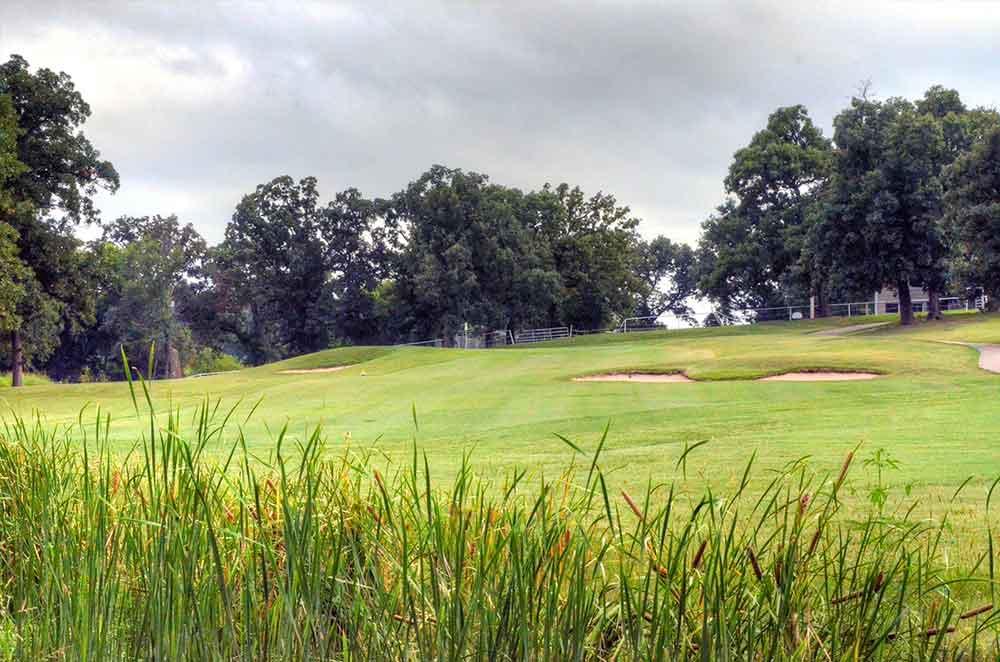 Carthage-Golf-Course,-Carthage,-MO-Cottontails
