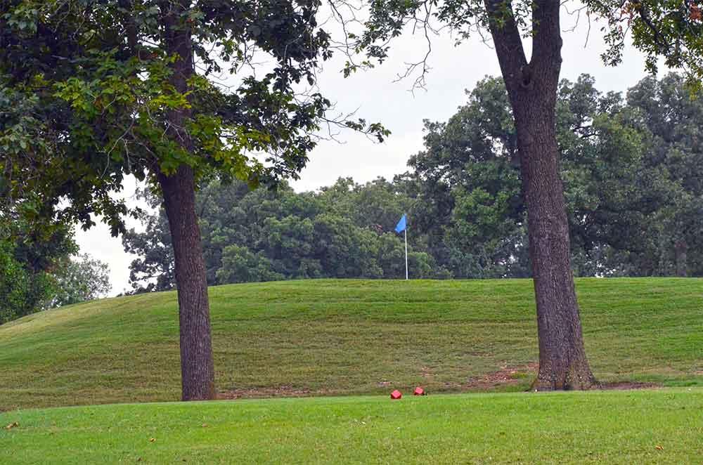 Carthage-Golf-Course,-Carthage,-MO-Trees