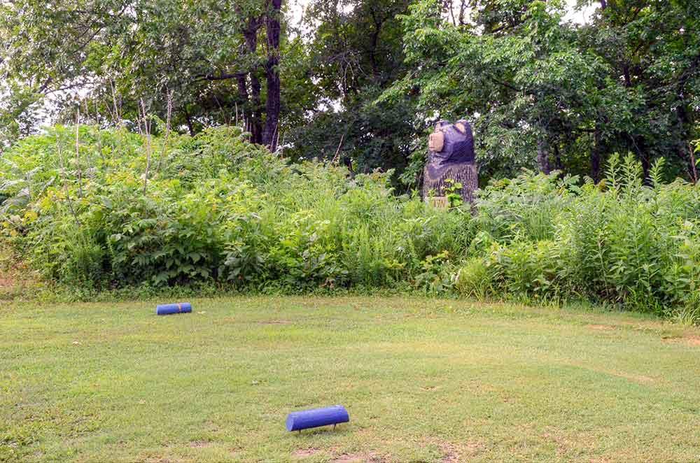 Center-Creek-Golf-Course,-Sarcoxie,-MO-Bear