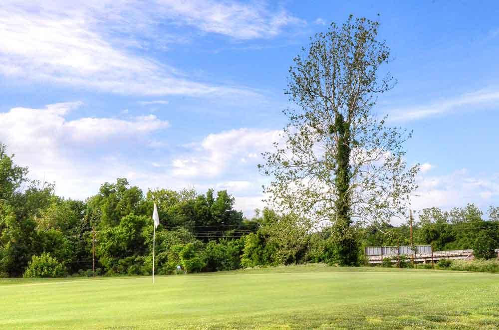 Center-Creek-Golf-Course,-Sarcoxie,-MO-Tree