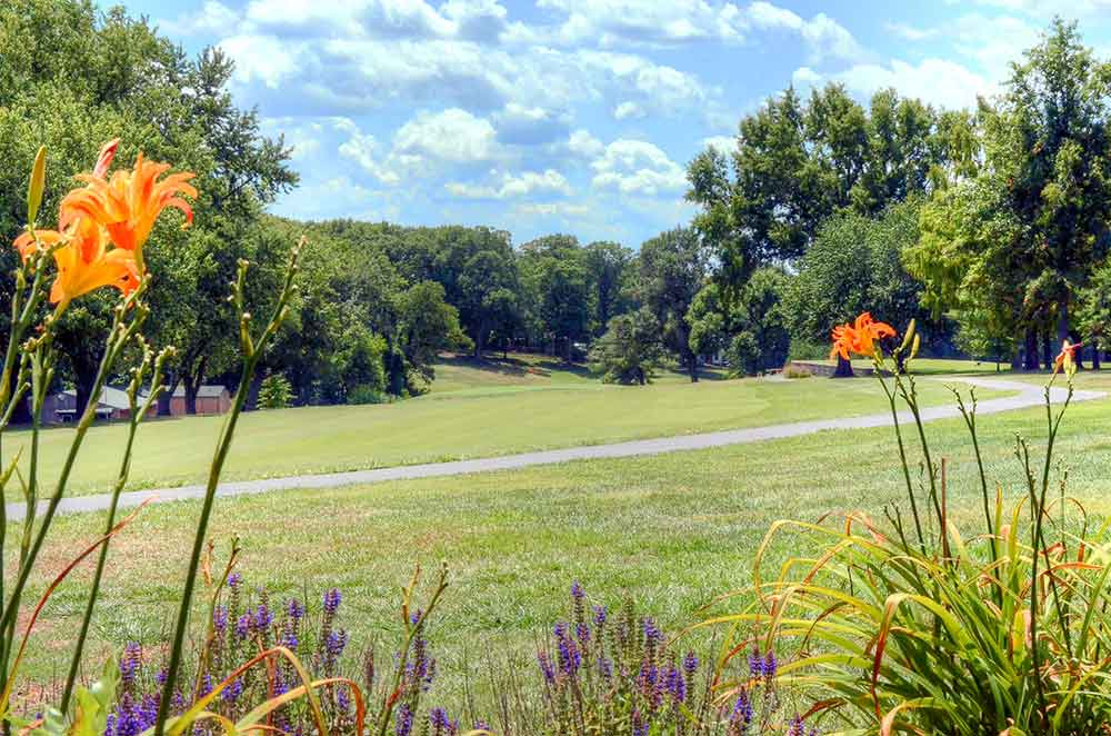 Creve-Coeur-Golf-Course,-St-Louis,-MO-Flowers