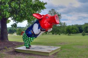 Eagle-Creek-Golf-Club,-Joplin,-MO--Pig