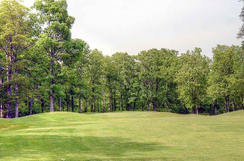 Fourche-Valley-Golf-Course,--Potosi,-MO_Green