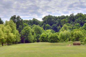 Honey-Creek-Golf-Club,-Aurora,-MO-Green