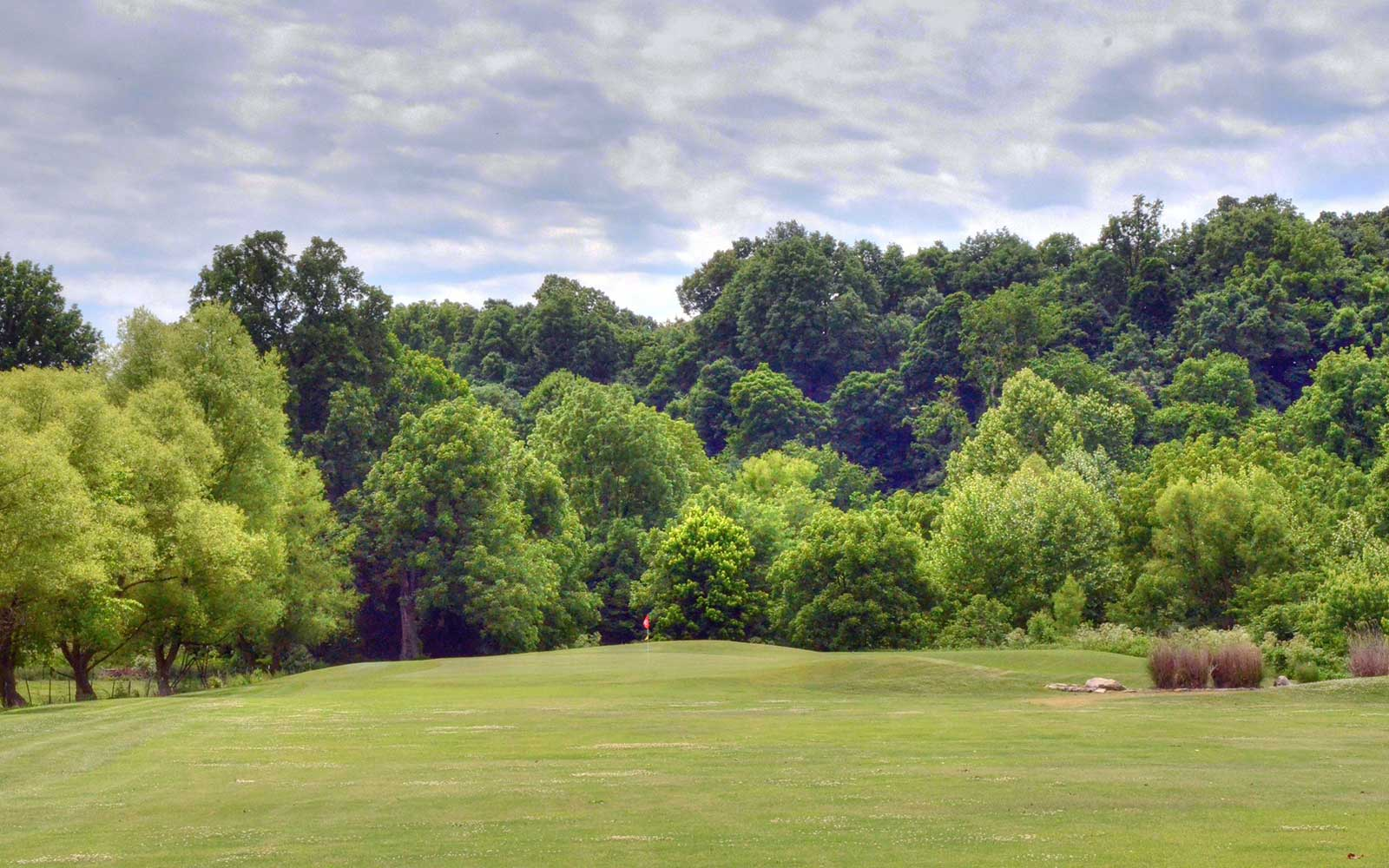Honey-Creek-Golf-Club,-Aurora,-MO-Green