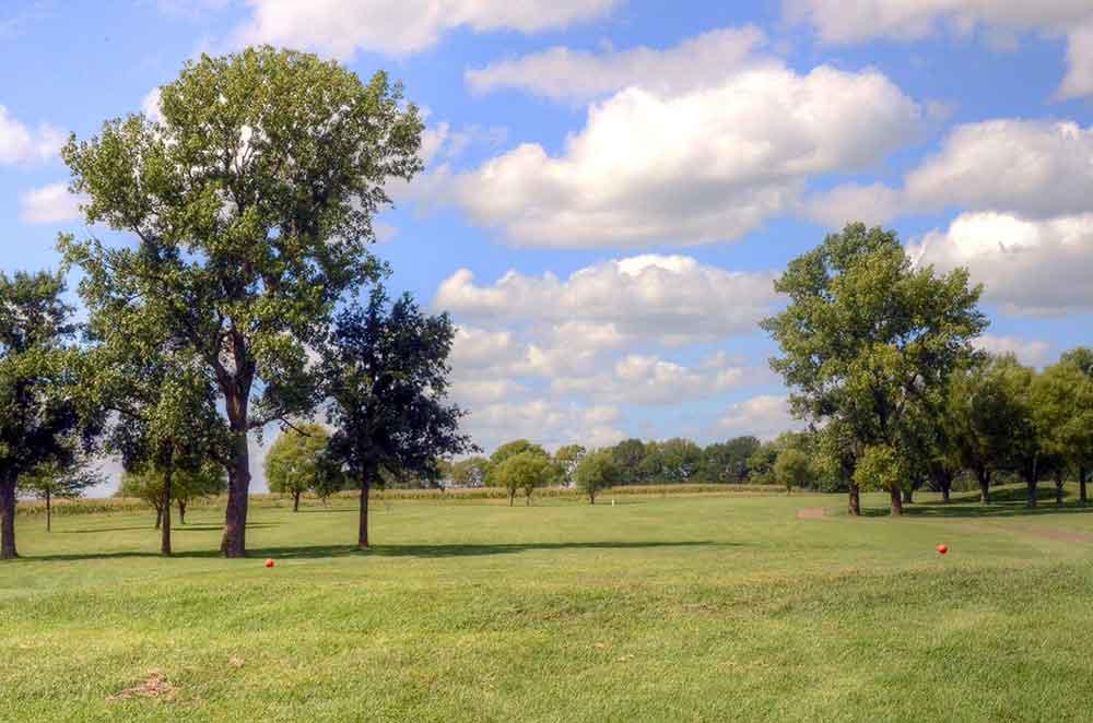 Hoot's-Hollow,-Pleasant-Hill,-MO-Fairway