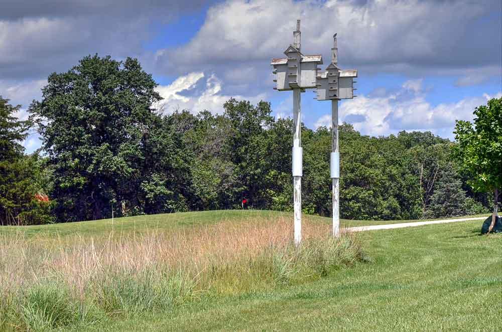 Innsbrook-Golf-Resort,-Innsbrook,-MO-Bird-House