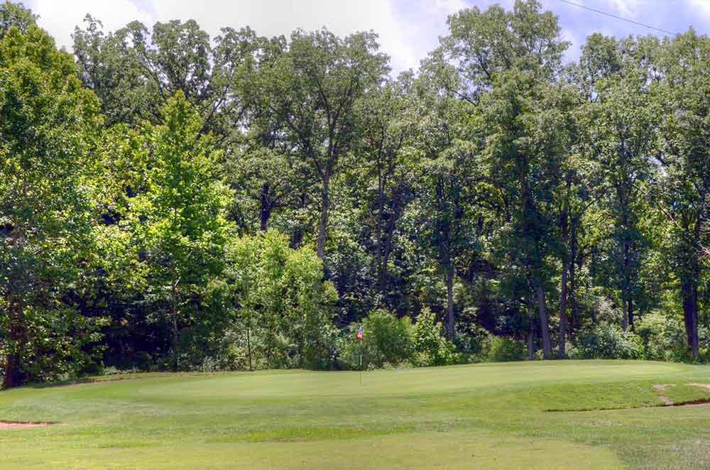 Innsbrook-Golf-Resort,-Innsbrook,-MO-Trees