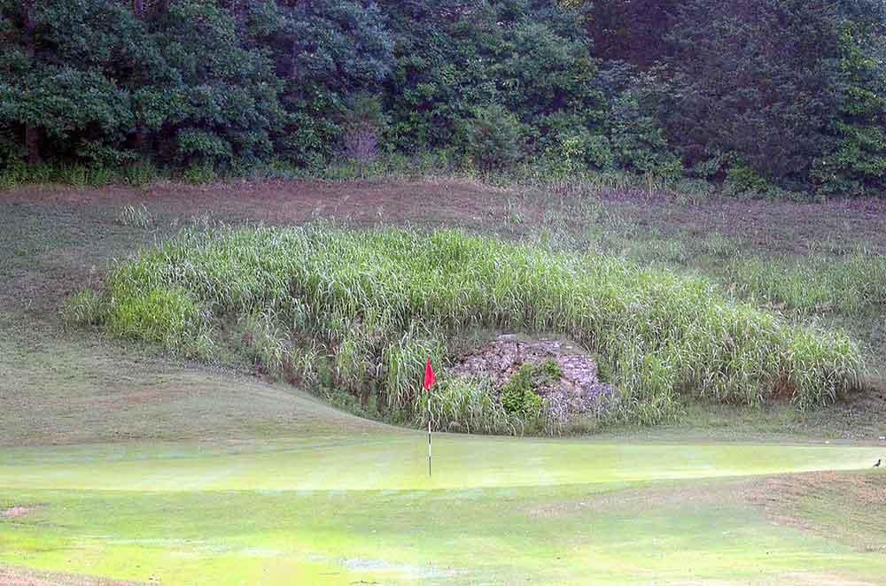 Meramec-Lakes-Golf-Course,-St-Clair,-MO-Rock