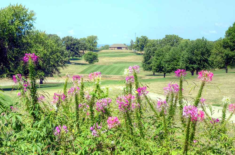 Mound-City-Golf-Club,-Mound-City,-MO-Flowers